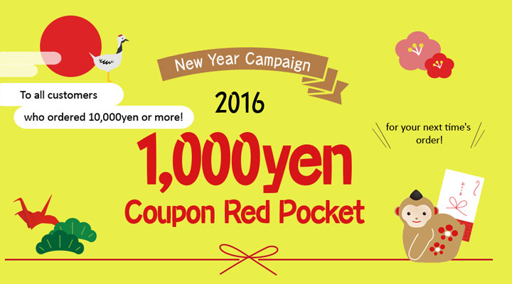 2016 New Year Campaign