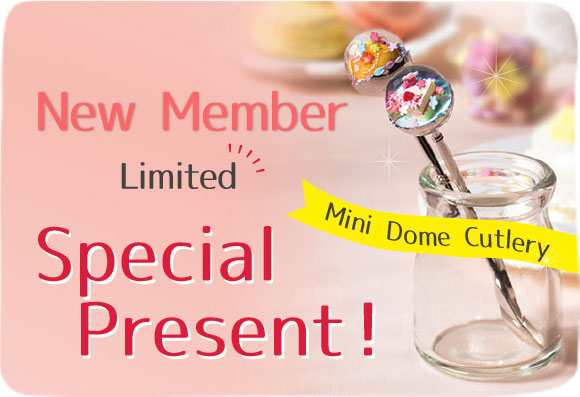New Member Spring Limited Special Present